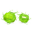 3d realistic kiwi in green splashes vector image