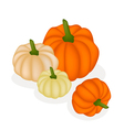 A Group of Pumpkins on A White Background vector image