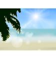 Azure beach vector image vector image