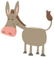 cartoon donkey farm animal vector image vector image