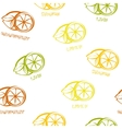Citrus seamless pattern background vector image vector image