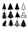 set christmas trees collection stylized vector image