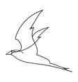 single line bbird vector image vector image