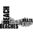the diversity of the brazilian beaches text vector image vector image