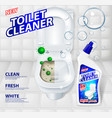 toilet cleaner banner ads effect of cleaner vector image vector image
