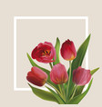 bouguet of tulips vector image vector image