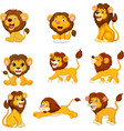 cartoon lions collection set on white background vector image vector image