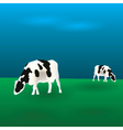 cows graze eps10 vector image vector image