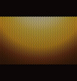 gold metal perforated texture vector image