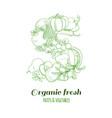 letter s pattern logo organic farm fresh fruits vector image