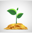 plant with leaves on a pile of gold coins money vector image