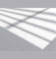 shadow overlay effects mock up window frame and vector image vector image