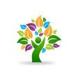 tree human symbol healthy lifestyle icon vector image