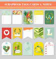 tropical flowers and parrots tags cards and notes vector image