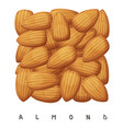 almond nuts square icon cartoon vector image