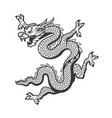 Chinese dragon china new year zodiac symbol