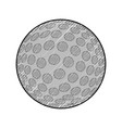 golf ball isolated vector image vector image