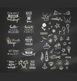 hand-drawn chalk lettering quotes about sea ocean vector image vector image