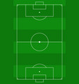 top view of the soccer field with green stripes vector image