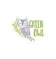concept owl with branch and leaf design vector image vector image