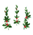 nature holly decor set vector image vector image