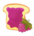 raspberry jam on toast with jelly made in cartoon vector image vector image
