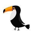 toucan toco big yellow beak icon beautiful exotic vector image