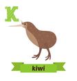 Kiwi K letter Cute children animal alphabet in vector image