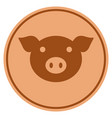 pig head bronze coin vector image vector image