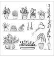 Pot plants and tools sketch vector image vector image