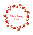 Abstract Round Frame Made of Strawberry vector image vector image