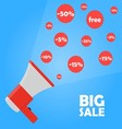 Announcement megaphone to big sale discount vector image