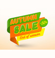 autumn sale banner template special offer tag vector image