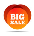 big sale special offer price sign advertising vector image