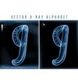 blue 3d x ray style alphabet vector image