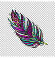colorful native feather vector image