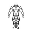 human male muscles vector image vector image