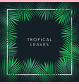 jungle theme design template for banner vector image vector image