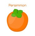 persimmon tasty vegetarian fruitsweet exotic food vector image vector image