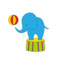 Dexterous Circus Cartoon Elephant on Podium with vector image