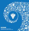 Grapes icon sign Nice set of beautiful icons vector image vector image