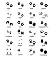 set footprints wild animals vector image vector image