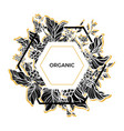 template organic vector image vector image