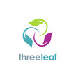 three color leaf logo vector image