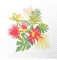tropical flower bouquet translucent background vector image vector image