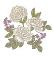 white roses and eustoma flowers vintage hand vector image