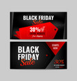 banner black friday vector image