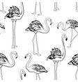 flamingos black and white seamless pattern exotic vector image vector image