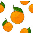 oranges as seamless pattern hand drawn colored vector image vector image