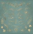Set of floral elements hand drawn design elements